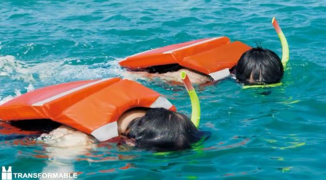 Buoyancy Aid, Life Jacket